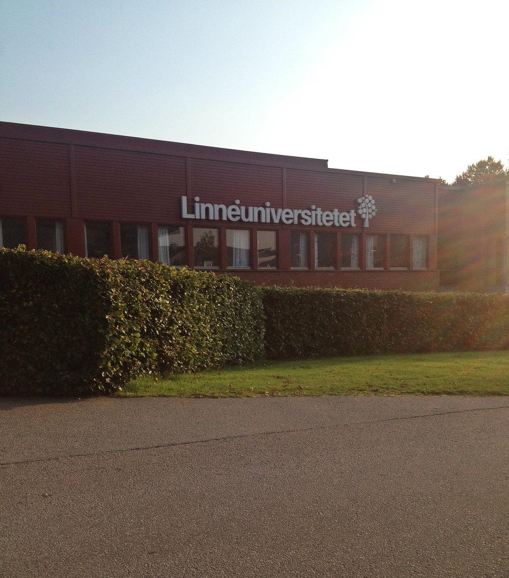 Linnaeus University | Tall Girl Meets World