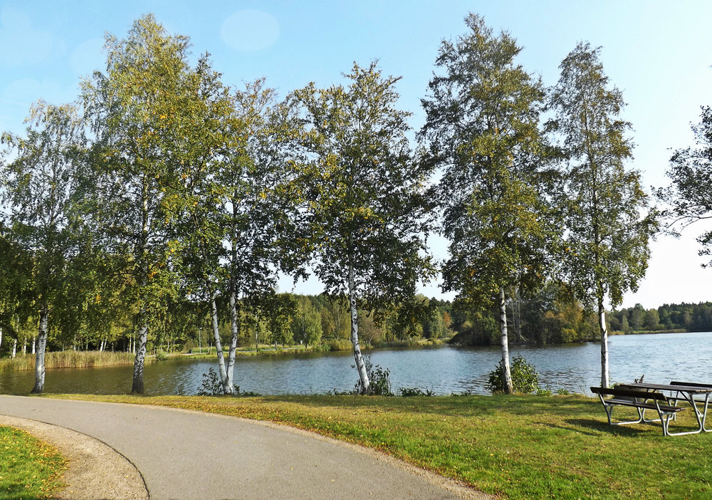 Växjö Lake and Forest | Tall Girl Meets World