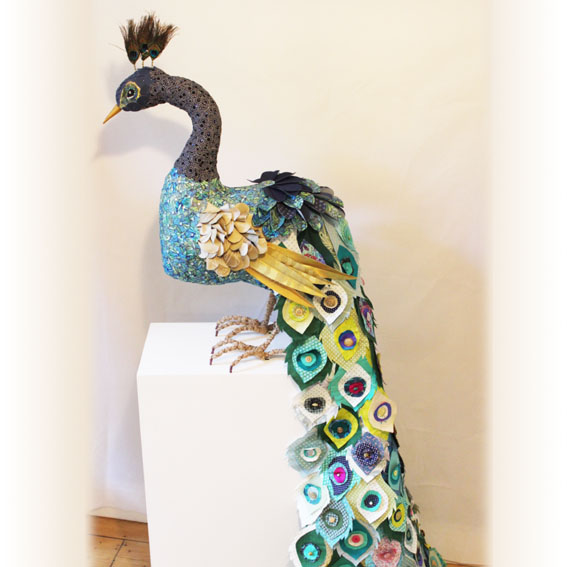 peacock Milestones.jpg