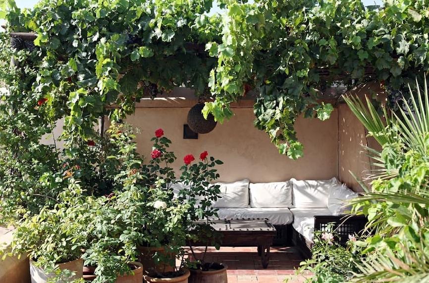 Dar Rbaa Laroube Garten 5.jpg