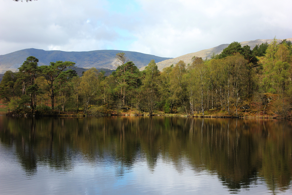 Tarn Hows, Photo credit,  Laurie Crayston