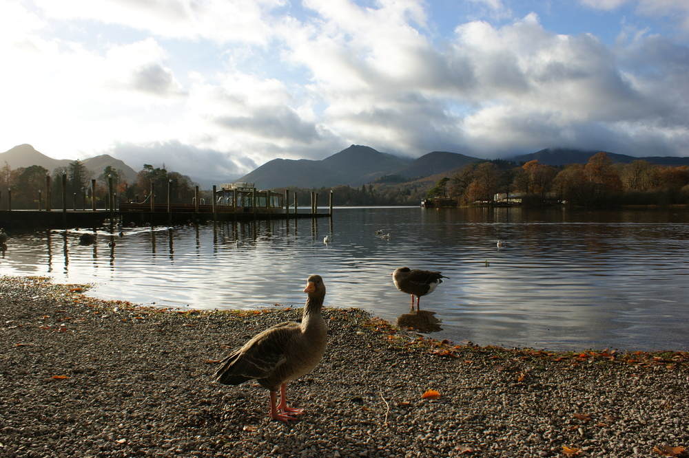 Derwentwater, Photo credit,  Laurie Crayston