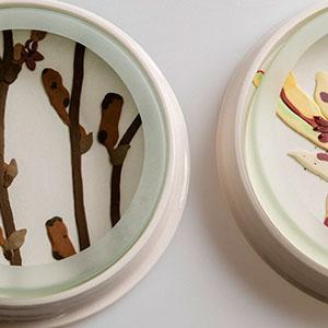 Herbarium_Dish.jpg