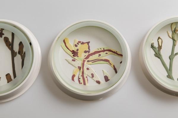 Herbarium Dish - Arachnorchis copy.jpg