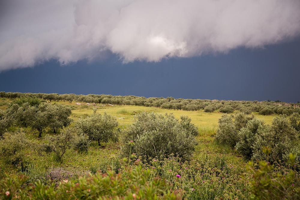 Before storm.jpg