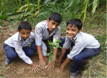 Students Planting Tree in Saraswati