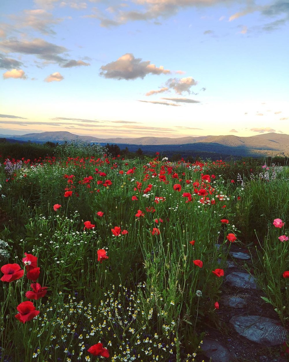Bucket List Places to see on the east coast of the USA Claire Wang Stowe Vermont Travel Women