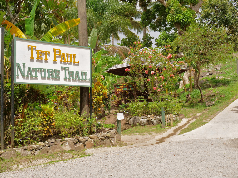 Real St Lucia Tours The Travel Women Tet Paul Nature Trail