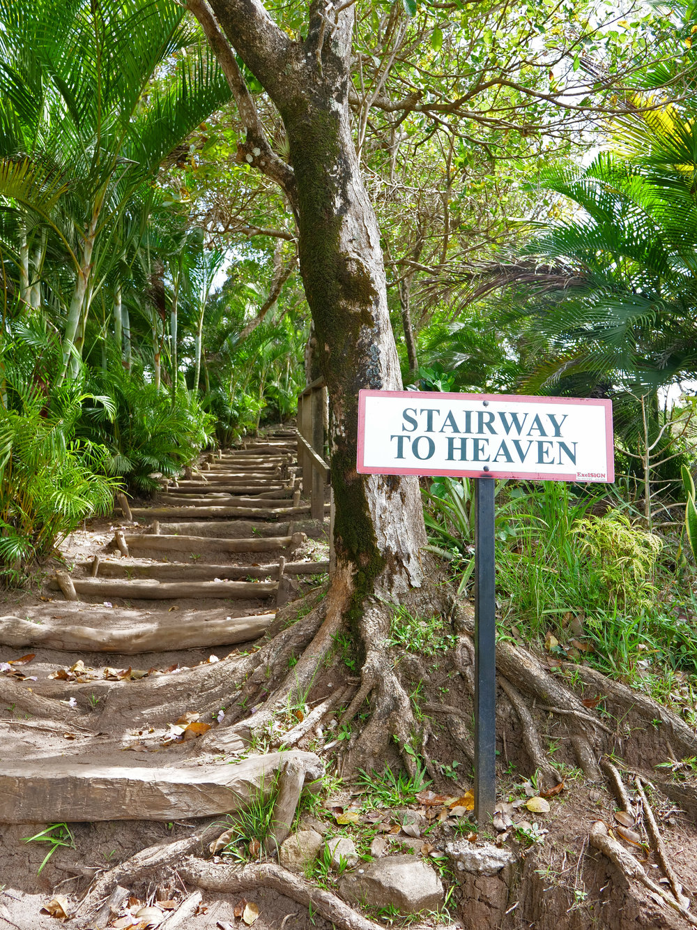 Real St Lucia Tours The Travel Women Stairway to Heaven