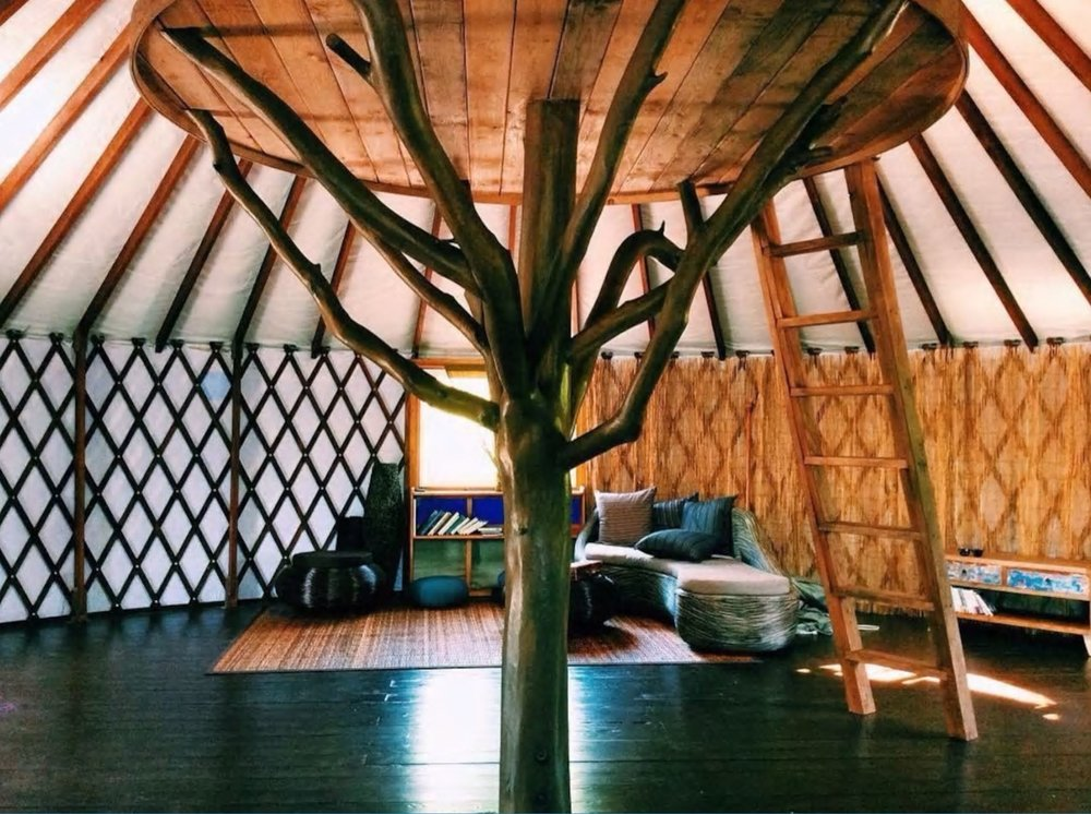 3. Mango Tree, Pahoa, entire home, 4 guests: This spacious yurt is and eco-friendly paradise in Puna jungle, Big Island. You may find Nala the cat lounging in the bed lofted in the center of the Yurt. MORE INFO