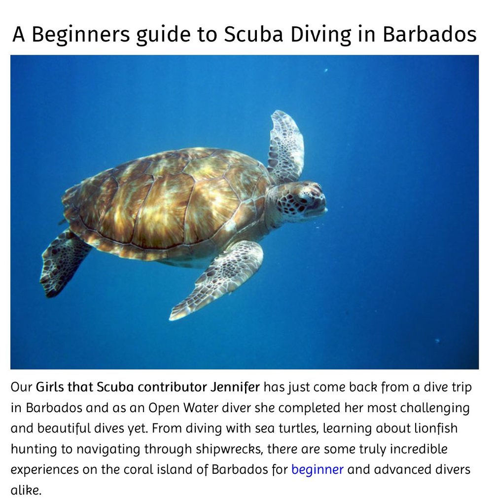 Girls That Scuba A beginners guide to scuba diving in Barbados