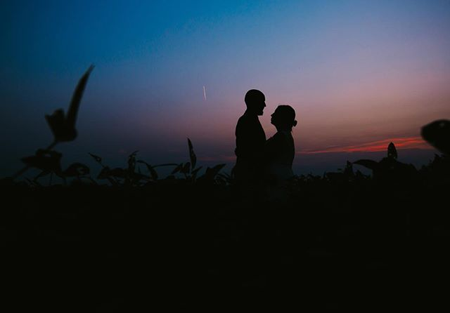 While photographing a wedding in Iowa recently, I couldn't pass up some portraits in the bean field at sunset!