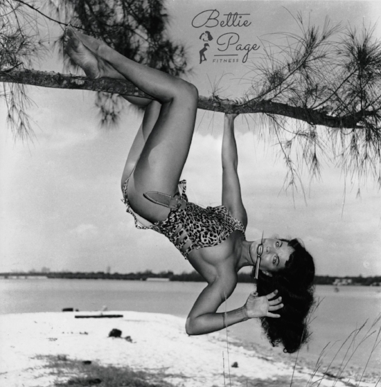 jungle bettie fit tree.jpg
