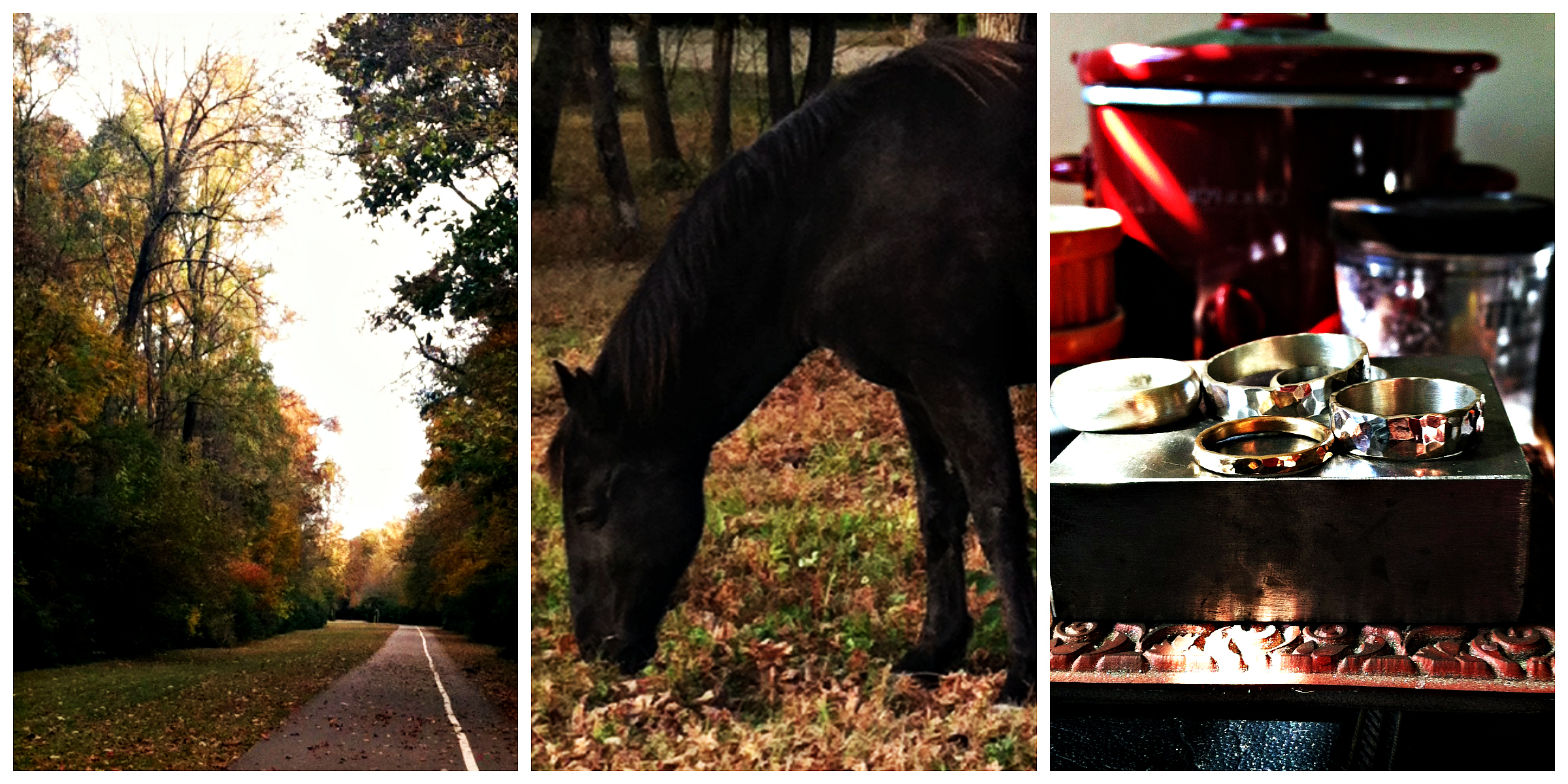 fall, autumn, horse, jewelry, path