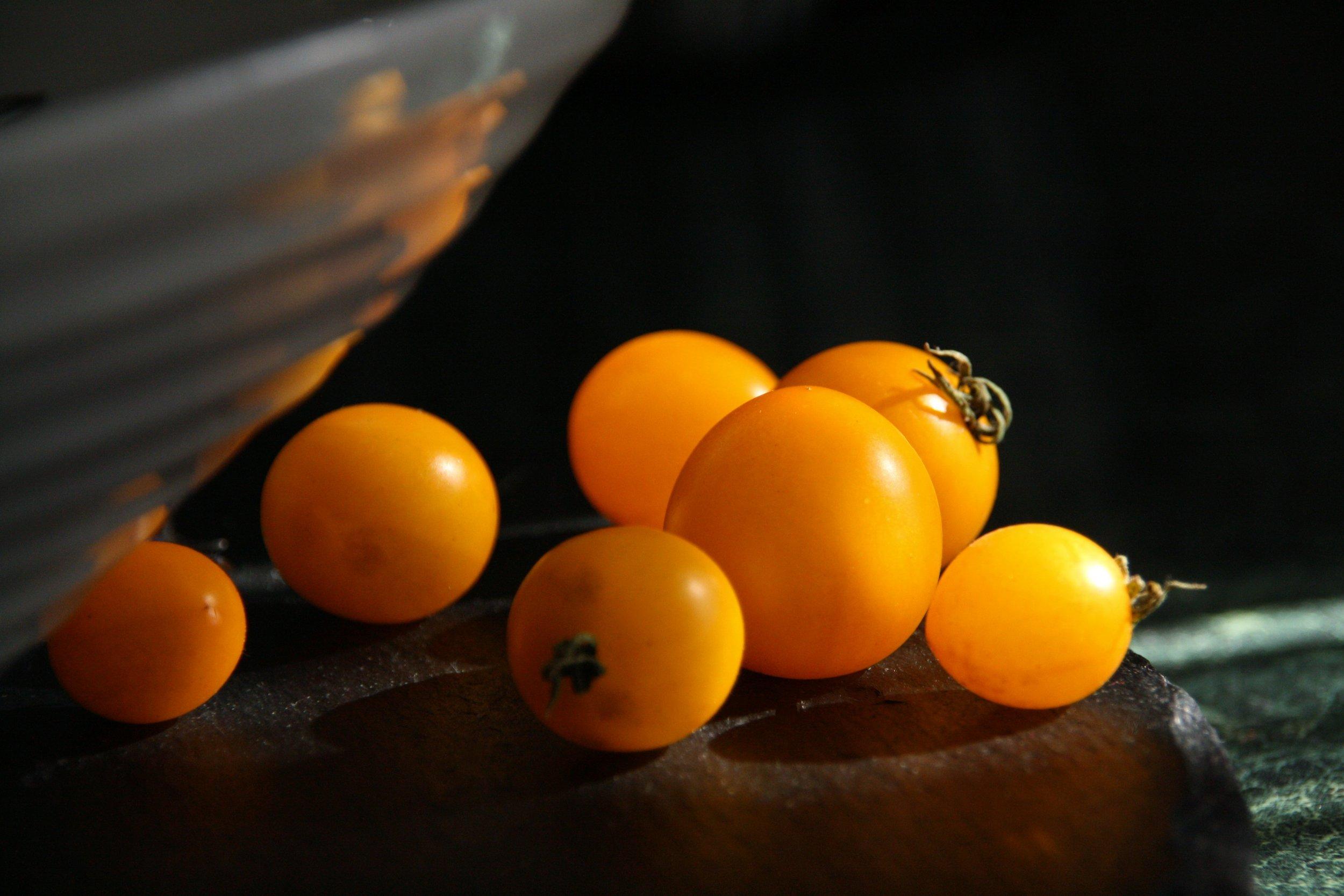 vermeer, tomatoes, tomato,