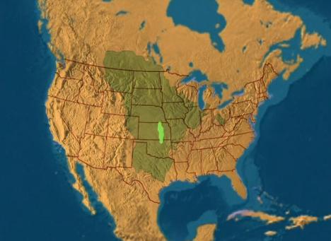 tallgrass prairie endangered ecosystem