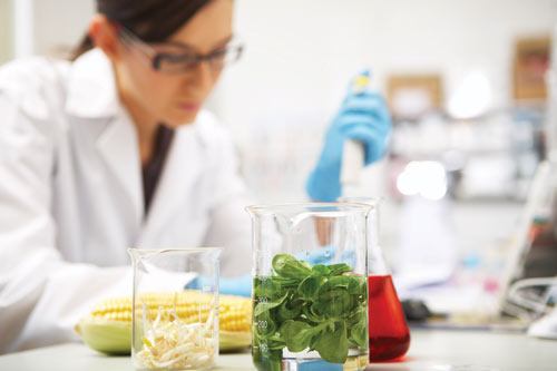 Intern scientist poses for photo after putting her lunch in a beaker like a total dip shit.