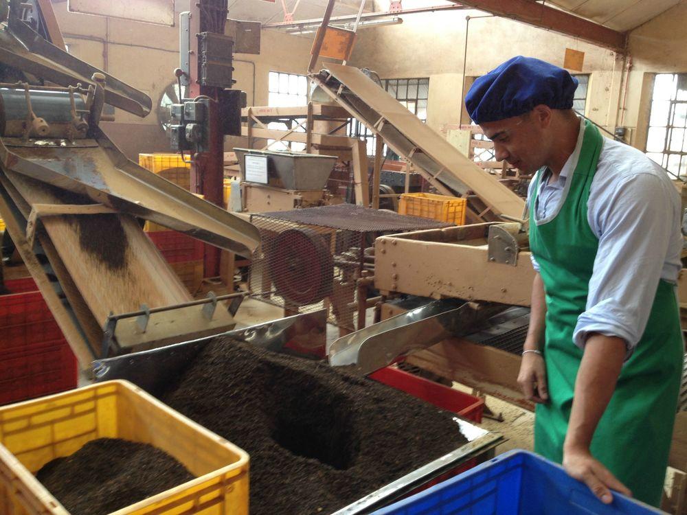 Me With Tea Grading Machine
