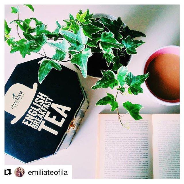 #Repost @emiliateofila ・・・ #dzieńdobry #bookstagram! Na razie muszę pożegnać mój kochany #bluszcz, ale do mieezkanka w Poznaniu wiozę dziś dwie inne #rośliny. W planach na popołudnie także drążenie dyni. A co Wy macie w planach? Dobrego dnia! 🎃🍃🍂 #kawa #coffeegram #coffeeaddict #coffee #cupofcoffee #plant #ivy #polishjungle #urbanjungle #plantsofinstagram #tea #książka #goodvibes #book #reading #instabook #vscobook #poznan #onthetable #czytambolubię #kochamczytać #bookstagram #bookstagrampl