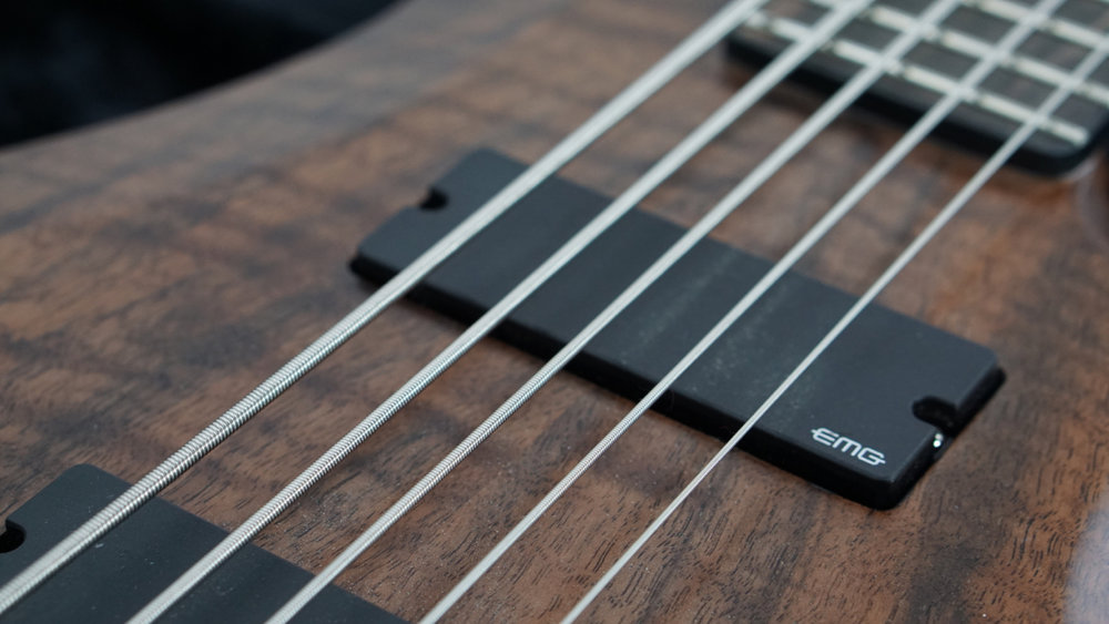 Bass_Walnut_5 - 5.jpg