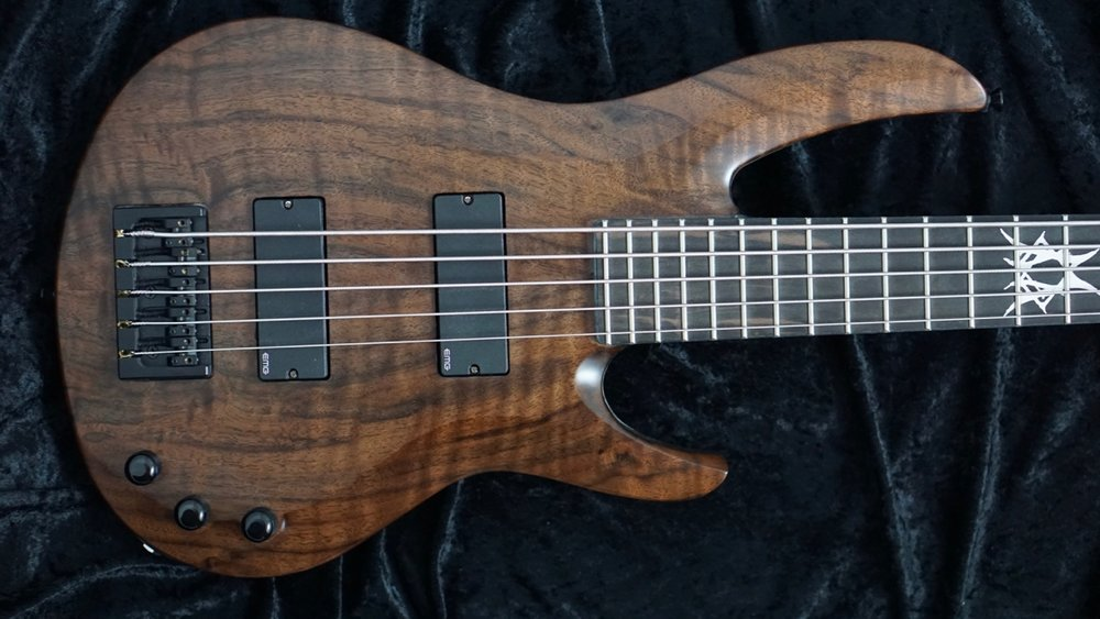 Bass_Walnut_5 - 2.jpg