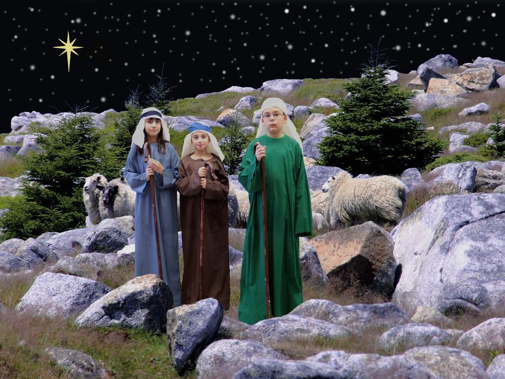Shepherds 1.jpg