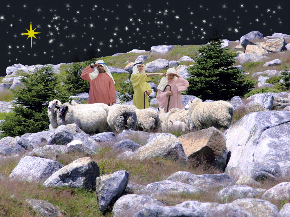 Shepherds Searching 1.jpg