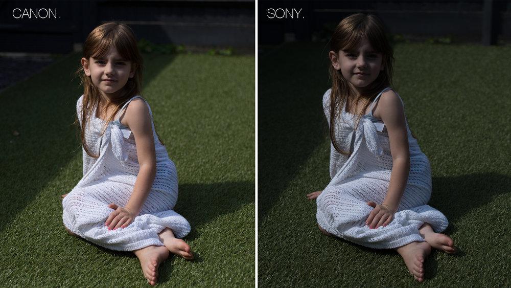 Canon vs Sony comparison 2