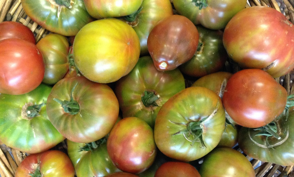 Heirloom tomatoes from Napa Hillside Farm.