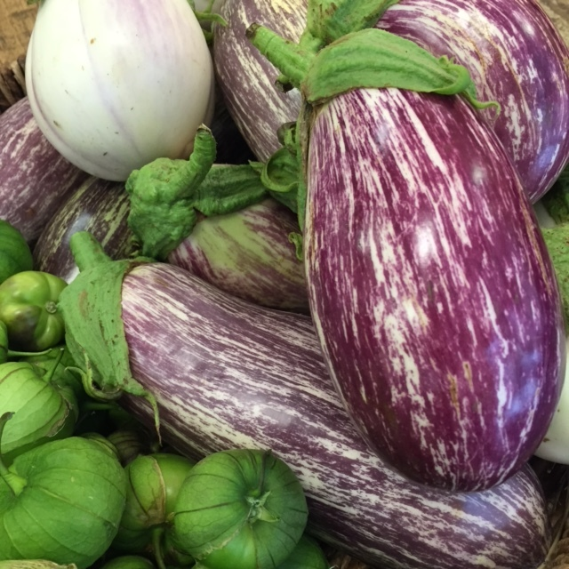 Graffiti Eggplants from Napa Hillside Farm.