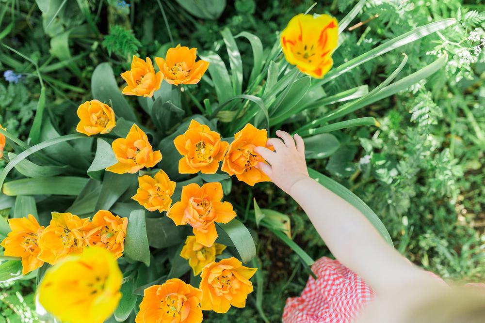 tulip-kids-photoshoot-amsterdam.jpg