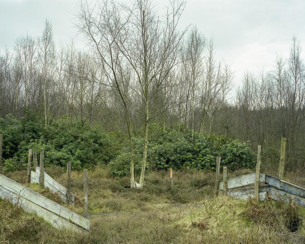 Holmbush 250308002.jpg