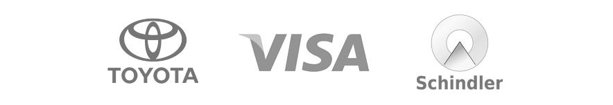 visa+toy+sch.png