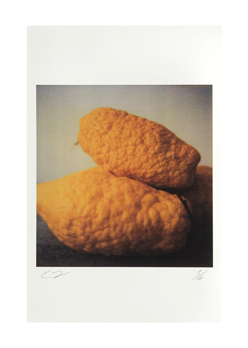 Cy Twombly  Lemons, Gaeta , 2005 Color dry print 17 x 11 inches  (43.2 x 27.9 cm)  © Nicola Del Roscio Foundation