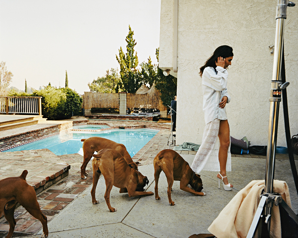 Larry Sultan  Boxers, Mission Hills,  1999 Color coupler print 30 x 37 1/2 inches  (76.2 X 95.3  cm) © Larry sultan 1999