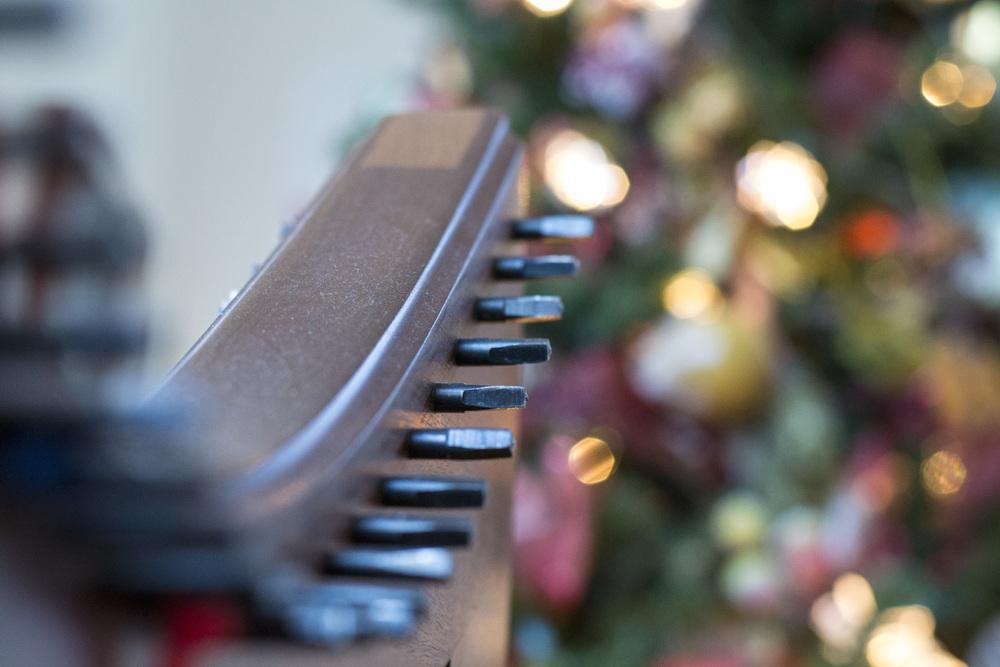 _DSC0249_Christmas 2013