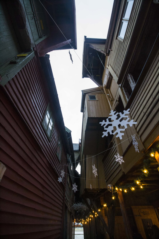 Bergen_151203_0073.JPG