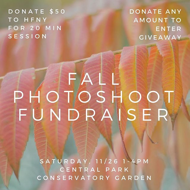 FRIENDS! I'm doing a little experiment. For the first time ever, I'm offering up photography sessions to the public, but with a twist. I'm using my skills to try and fundraise over $1,000 for @hfny AND provide photography at a below-market rate so people of all means can enjoy it! Check out amandaliew.com/giveback for more details (link in bio). #communityovercompetition #givebackgiveaway #photoraiser