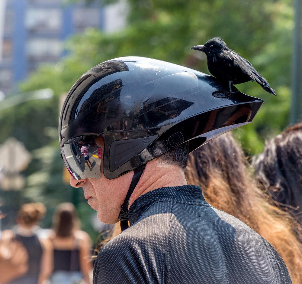 Serious cyclist.jpg