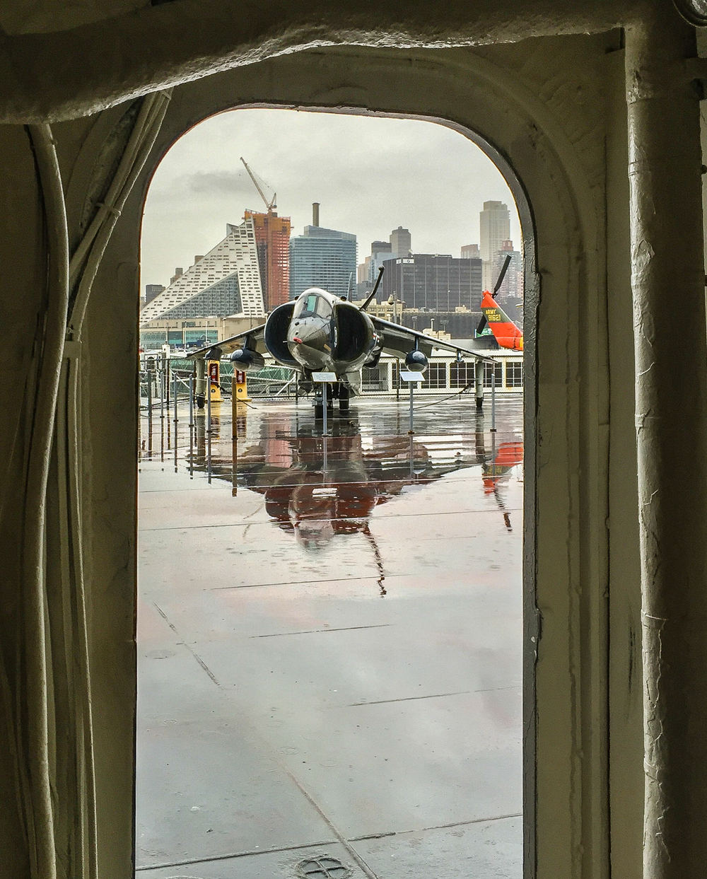 Harrier and reflection through island hatchway