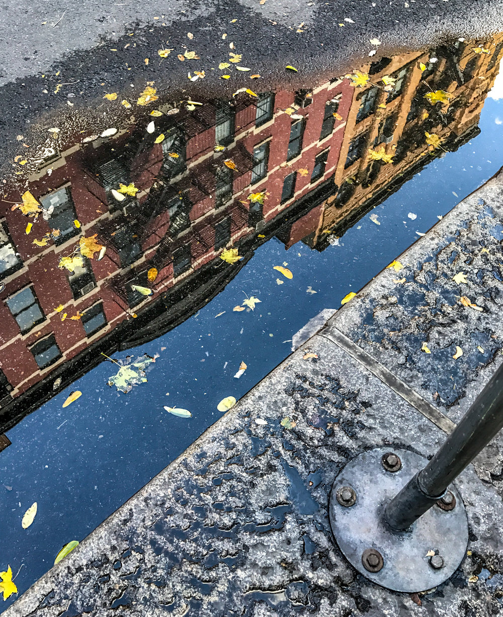NYC Puddle