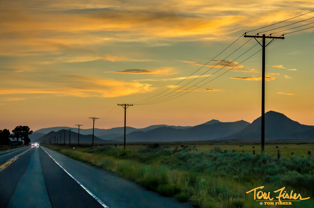 Sunset and power lines signed.jpg