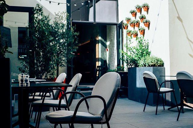 Klaar om onze deuren te openen en jullie te verwelkomen in ons heerlijke stukje Antwerps groene genot; onze Backyard! 🌳 Heel de dag geopend! 🌳 ➡️ Reserveer tijdig: www.backyard.be/reservations ⬅️ ___________________________ #backyard52 #thisisantwerp #visistantwerp #bistronomie #bonappétit #antwerphotspot #backyardigans