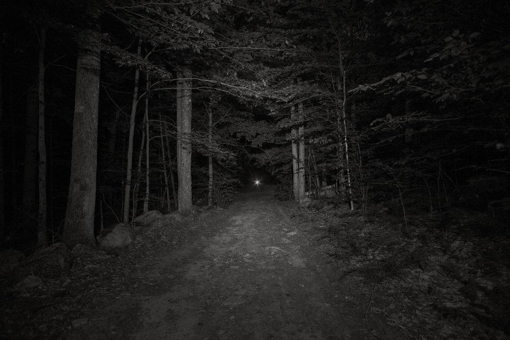 night-trail_1(test).jpg