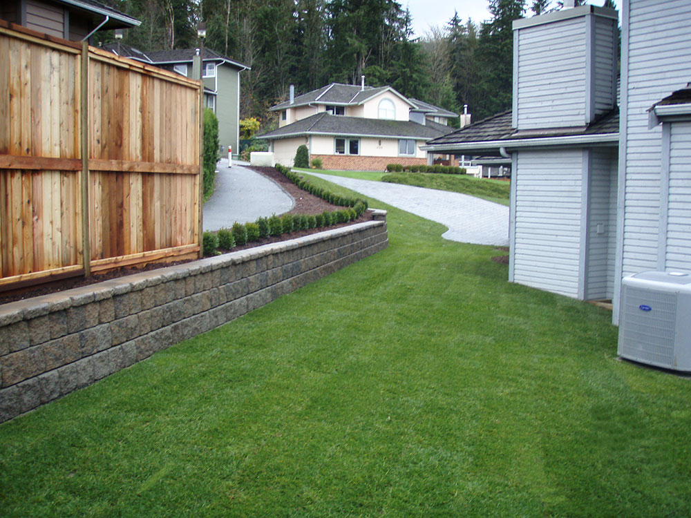 New-lawn-installation3.jpg