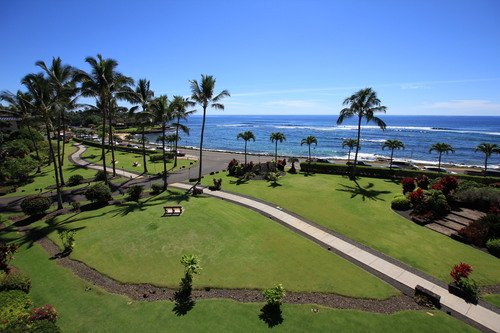 Alii 1/1&Banyan 1/1 - $2500 + $600 closing per week