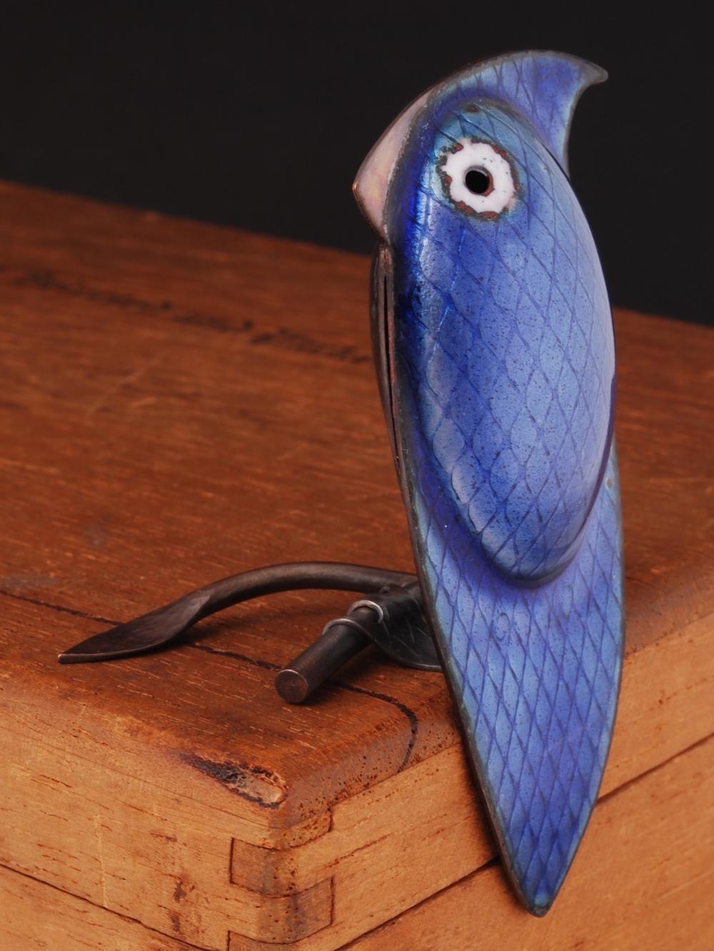sapphire bird