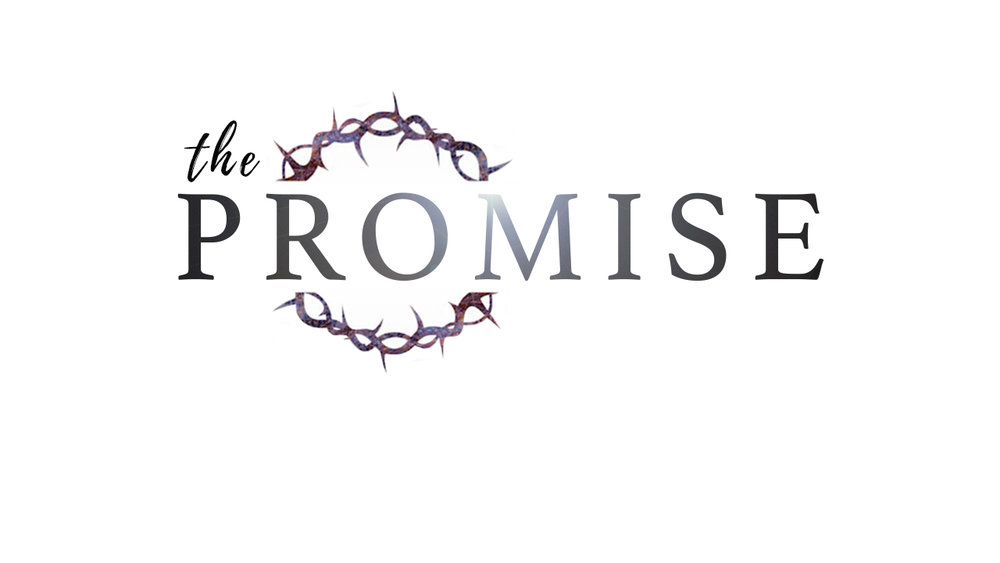 04-01- 18 The Promise - Part 3 by Pastor Duane Lowe {  AUDIO ONLY  )