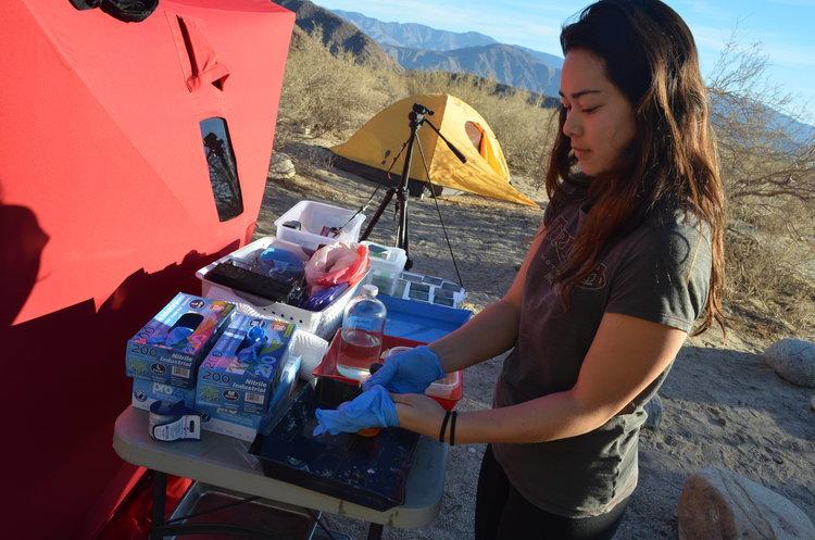 Traveling Tintype Tent 2015