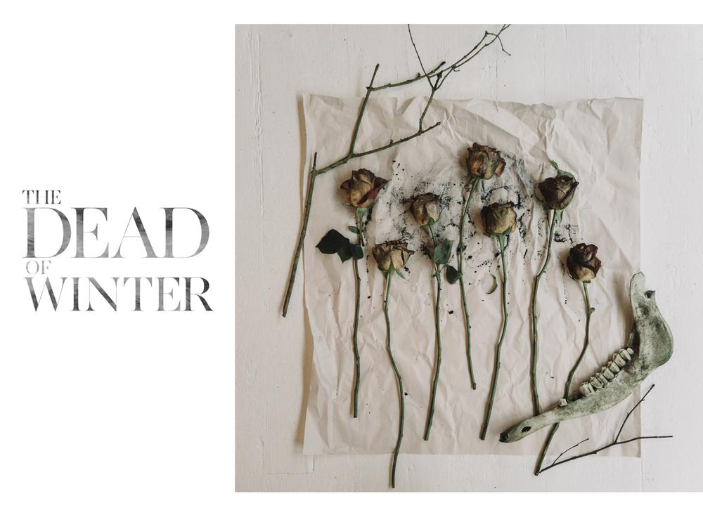 deadofwinter-01.jpg